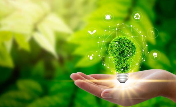 DATA ANNOTATION – GREEN ENVIRONMENT AND HEALTHY MIND